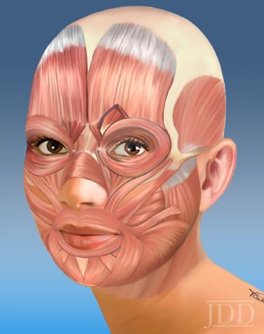 Periocular Facial Expression
