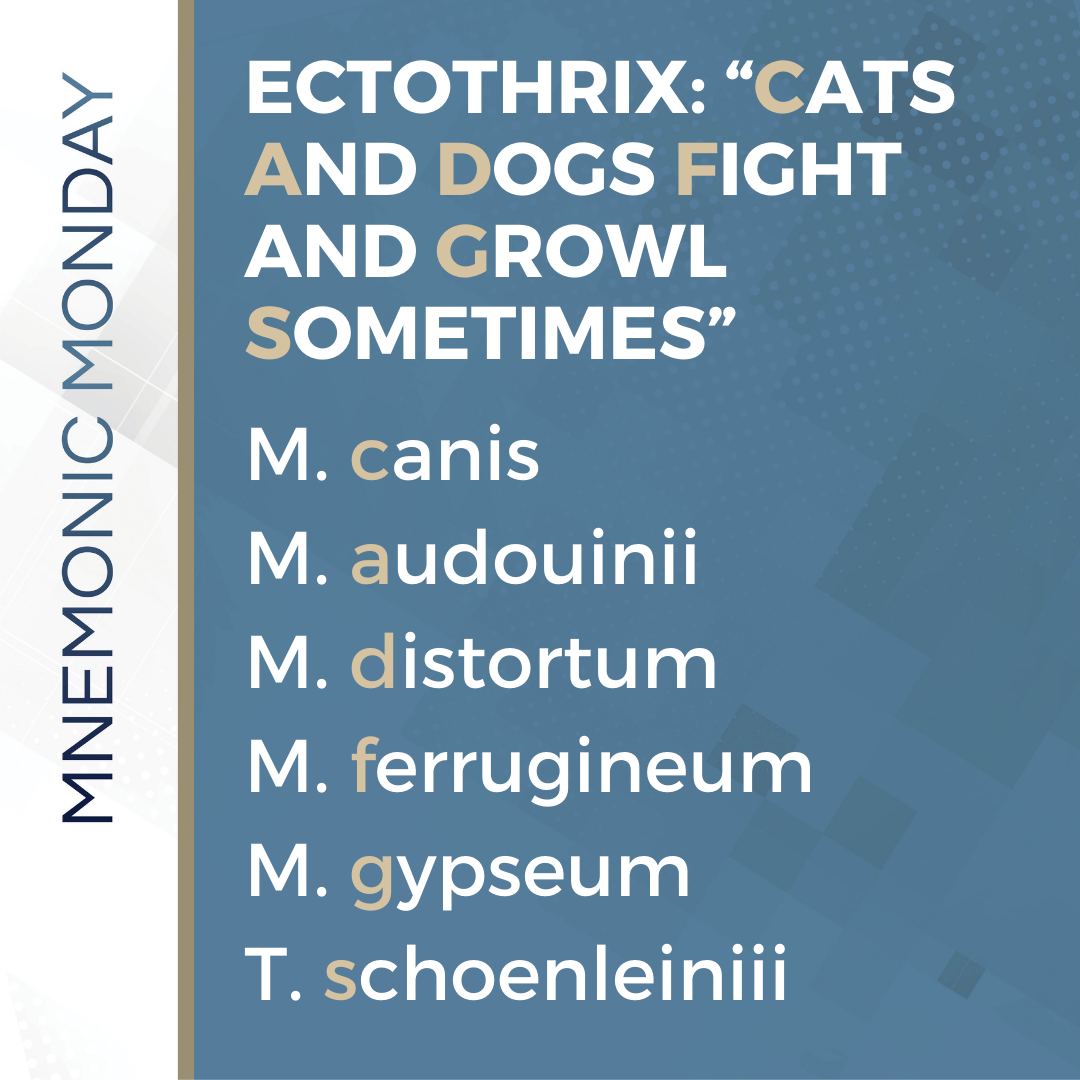 Ectothrix