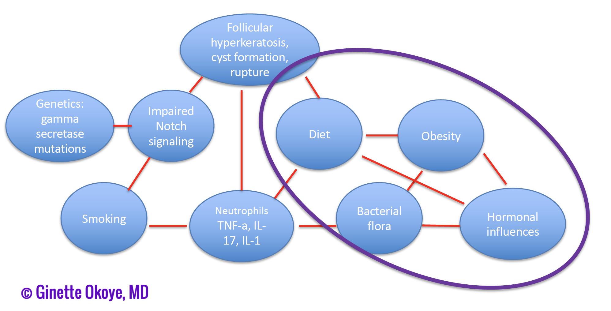 axillary-mammary-inguinal subtype of HS