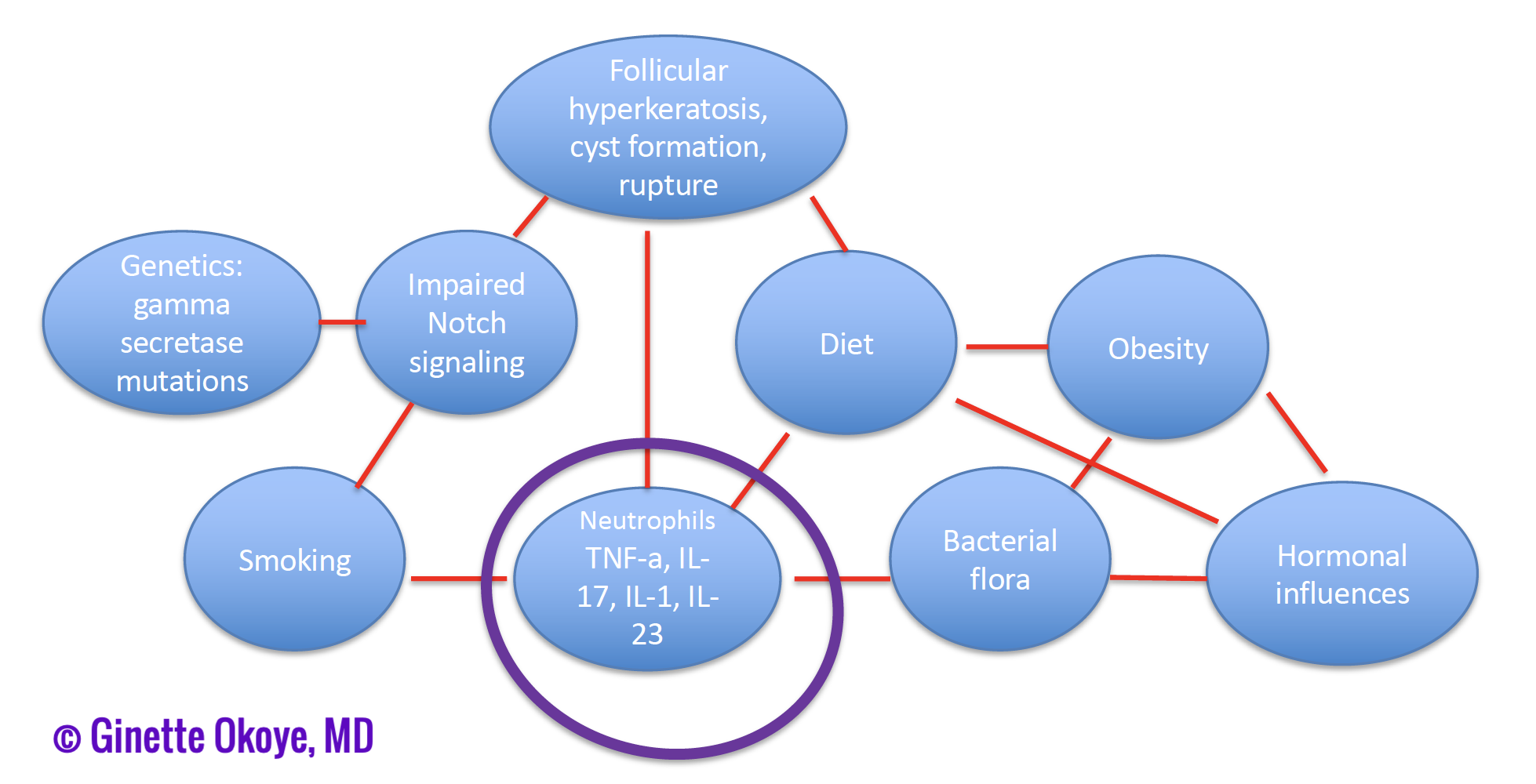 Pathogenesis of gluteal subtype of HS